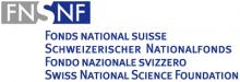 SNF Logo 400